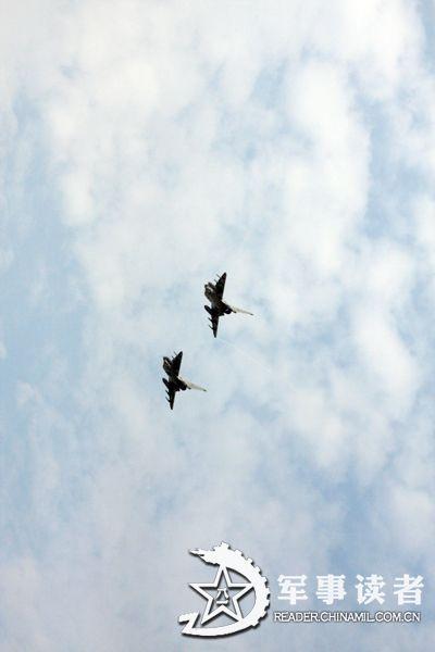 壁纸 动物 鸟 鸟类 400_600 竖版 竖屏 手机