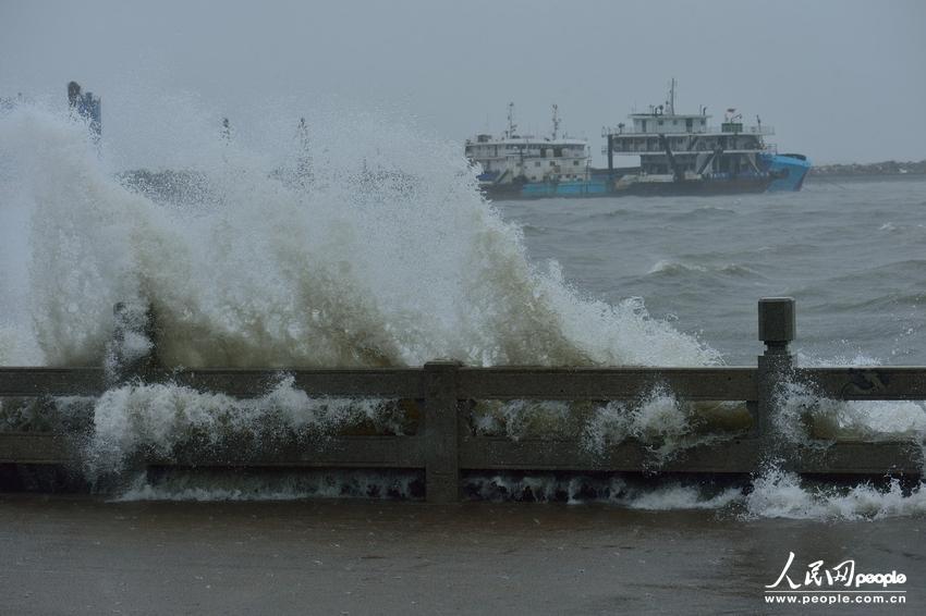 """11月10日,在海南省海口市,受台风""""海燕""""影响海口湾巨浪拍岸."""