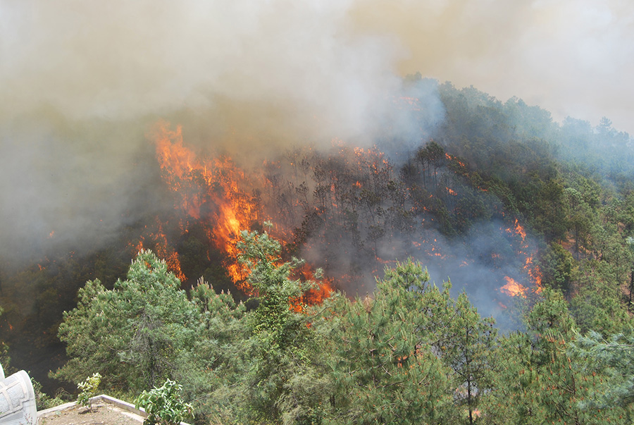 森林火灾,截至14日上午10时仍未彻底扑灭,过火面积约1200亩,现场扑救
