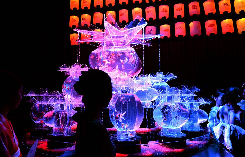 日本和服少女欣赏金鱼展