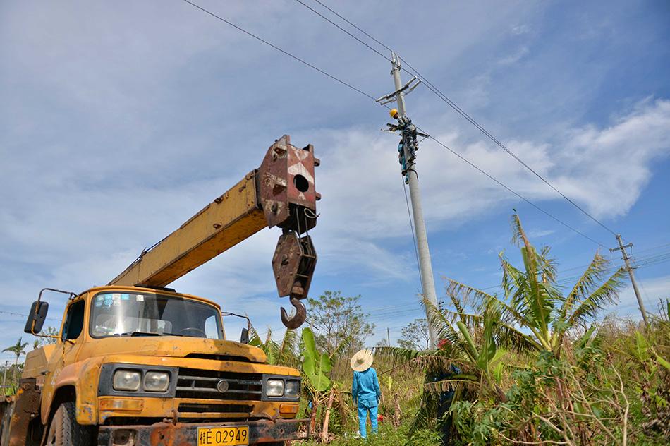 广西北海市供电部门连日来不断向涠洲岛运送电力抢修人员、设备等,加紧抢修因台风损毁的供电线路。目前,岛上4条供电主线路已全部抢通,岛上各村低压线路已供电约四分之一,有15个村庄恢复送电,预计28日将对另外8个村庄检测送电。新华社记者周华摄