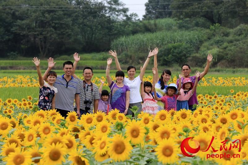 广西柳州:向阳花海醉游人【3】