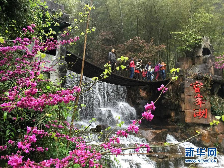4月5日,游客在湖南省张家界武陵源宝峰湖景区游览.