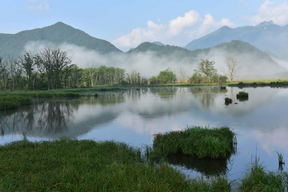 神农架大九湖高山湿地风光(7月13日摄)。
