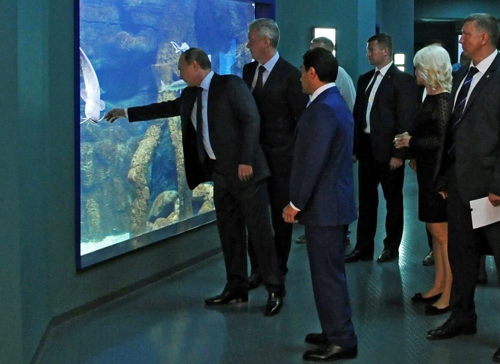 普京参观莫斯科海洋生物馆
