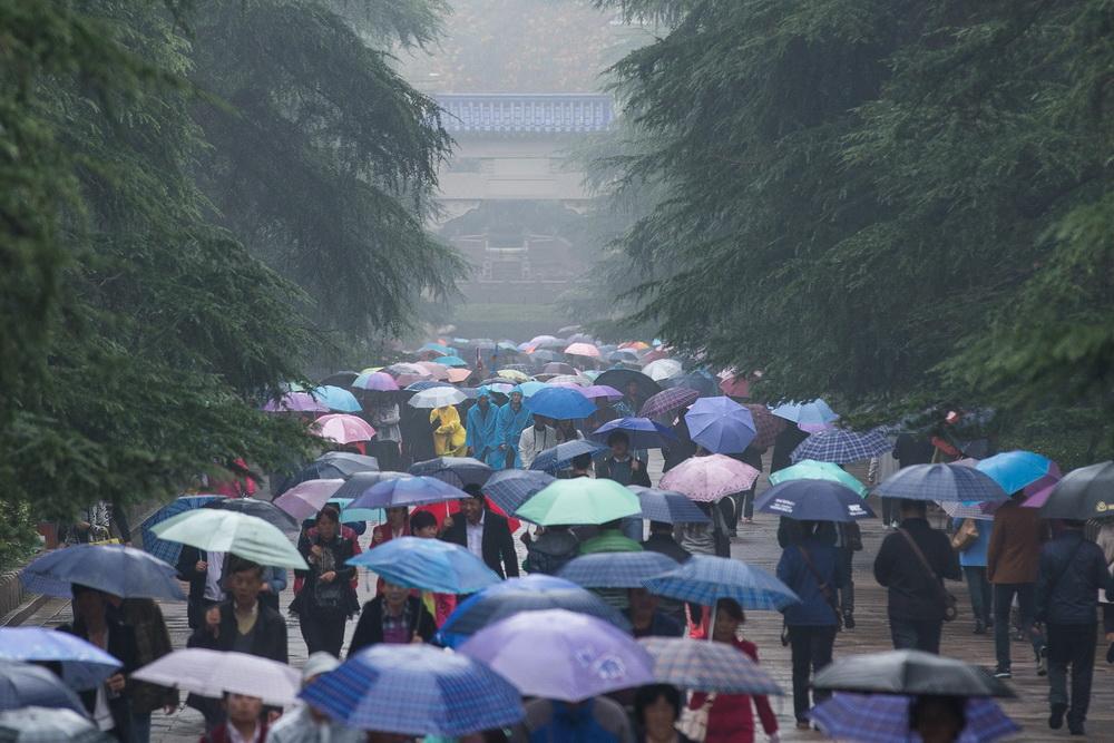 2015年11月12日,江苏省南京市,人们冒雨在南京中山陵参观。
