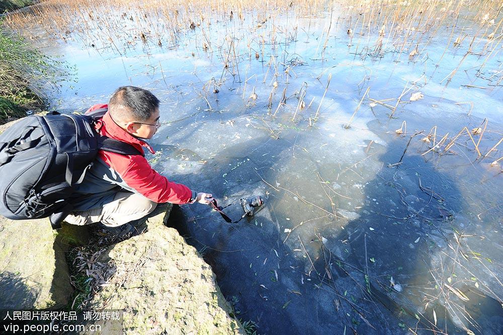 杭州:寒潮发力 西湖结冰