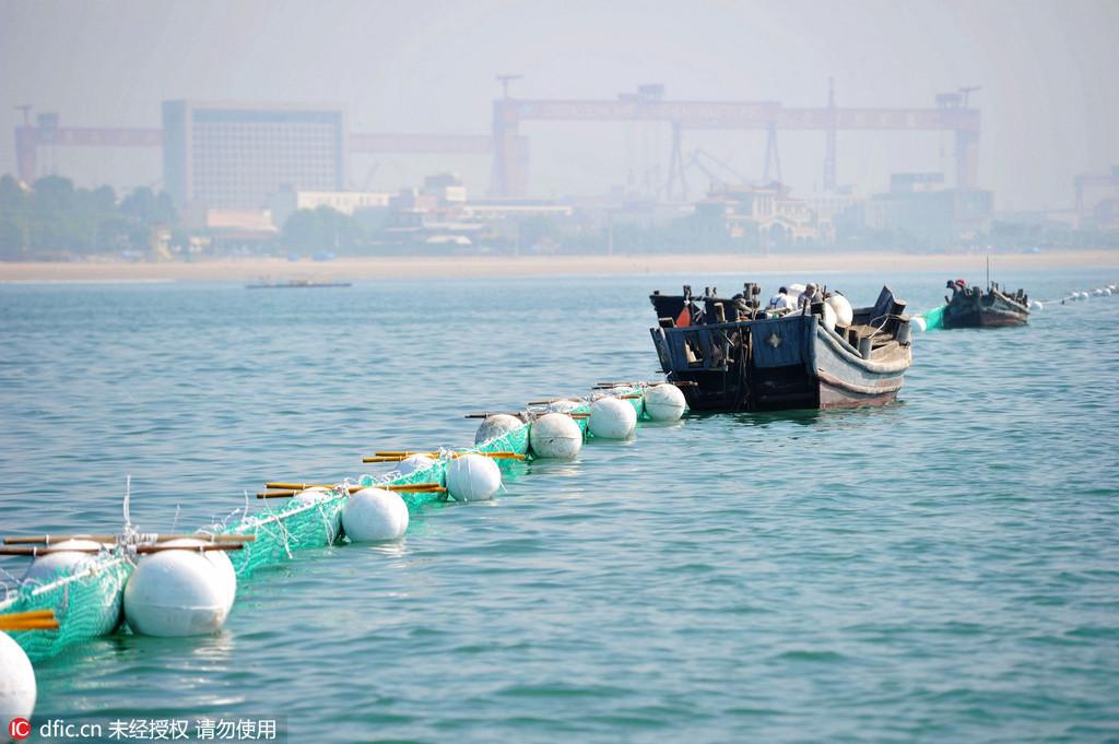 2016年6月16日,山东青岛金沙滩海水浴场