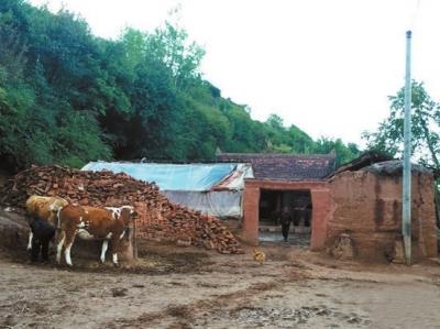 LGOP woman killed in Gansu case