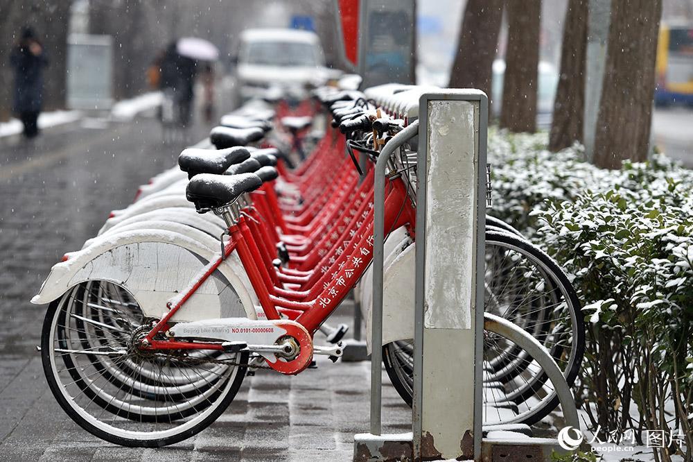 2月21日中午,北京城区飘起鹅毛大雪,瞬间地面上就积起一层薄雪。(人民网记者 翁奇羽 摄)