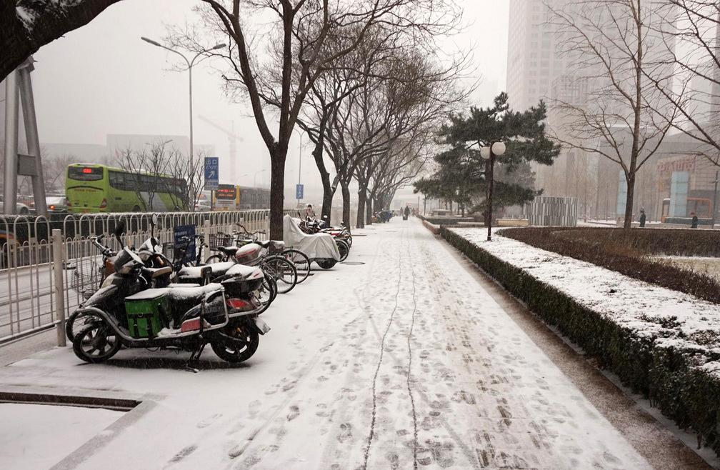 2月21日中午,北京城区飘起鹅毛大雪,瞬间地面上就积起一层薄雪。(人民网记者 陈悦 摄)