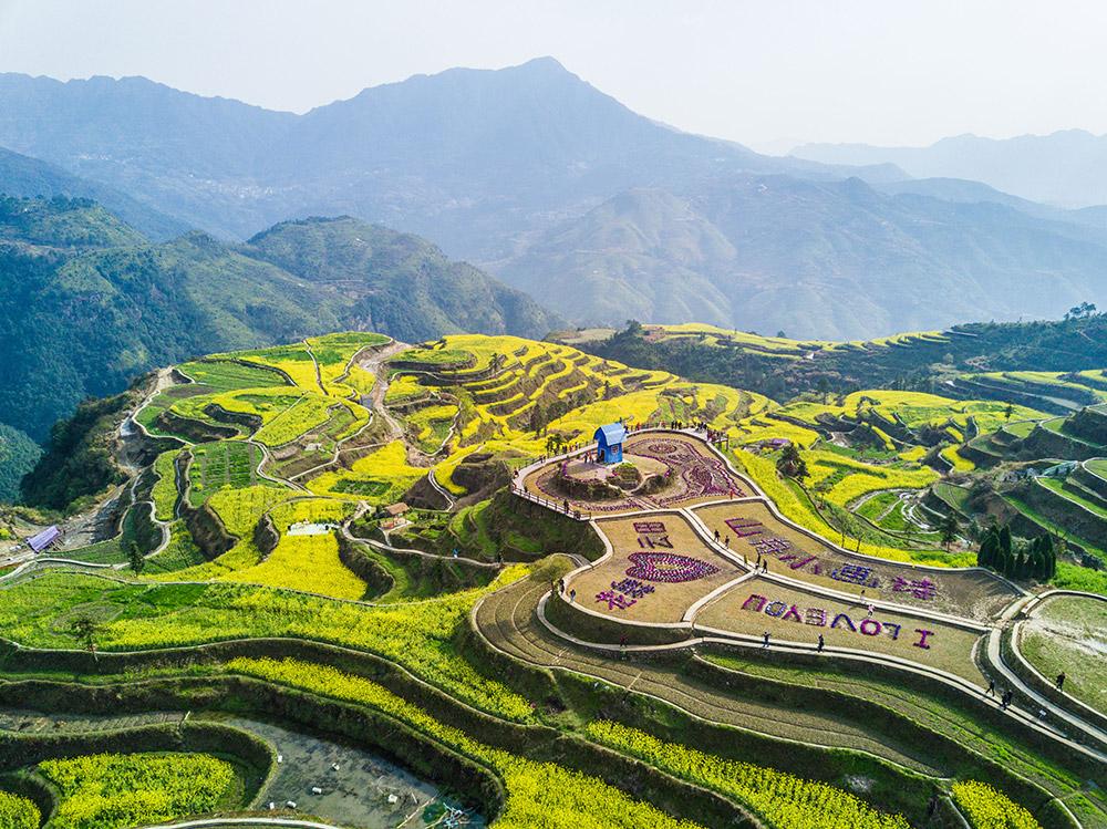 俯瞰高山梯田上的油菜花(3月26日摄)。