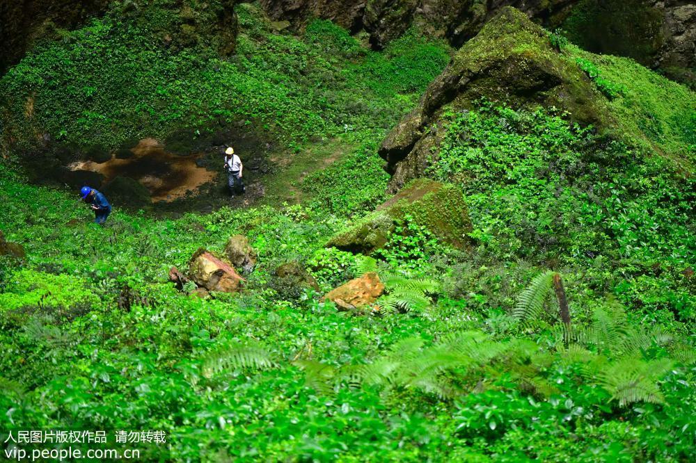 """5月18日在湖北省宣恩县锣圈岩天坑里拍摄的美丽的""""地下风景""""。"""