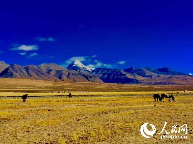 西藏阿里——世界屋脊的屋脊美如画【4】