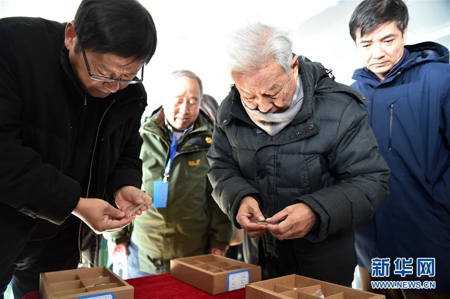 宁夏彭阳县发现商周遗址 专家推断墓葬系诸侯级别【4】