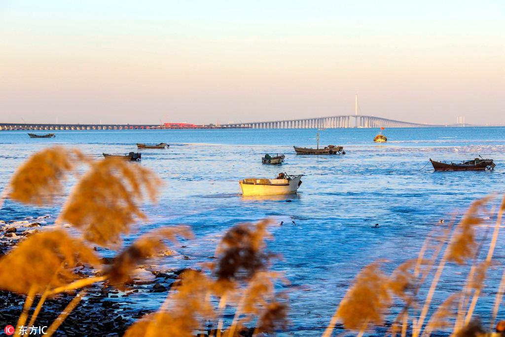 山东青岛大自然寒冬馈赠冰冻 胶州湾冬日风景如画卷