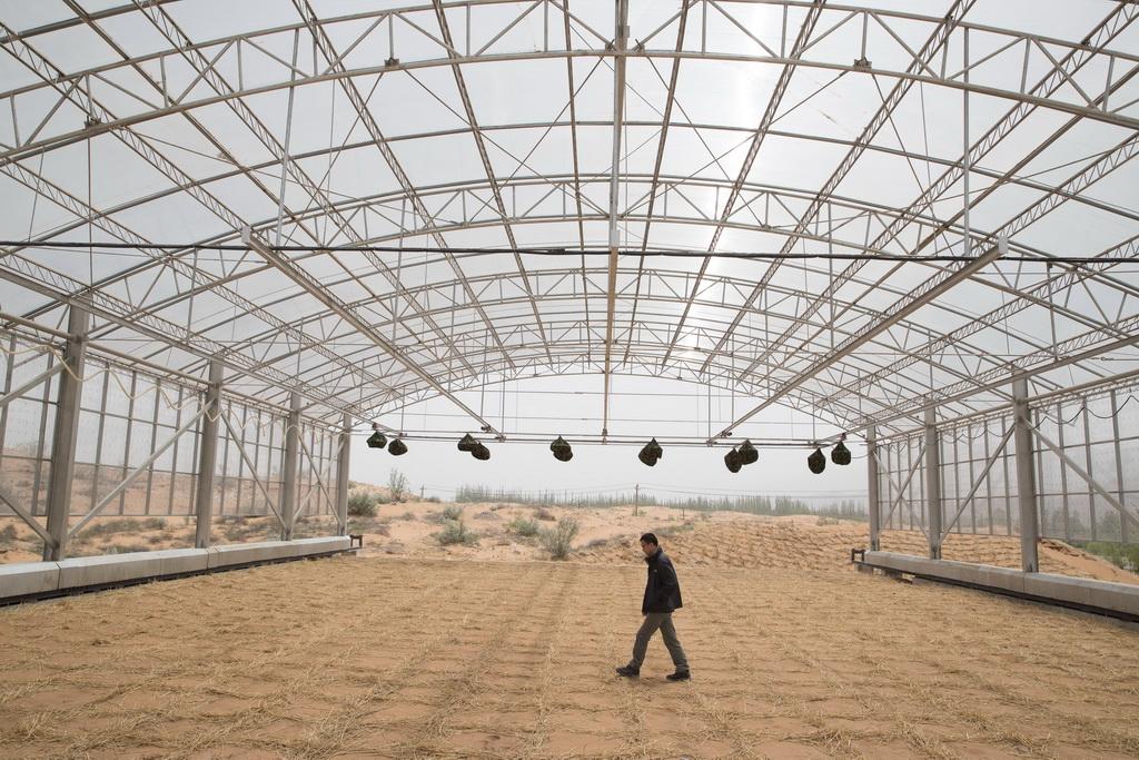 地面智能降水模拟系统的移动大棚(5月12日摄)。新华社记者 金立旺 摄