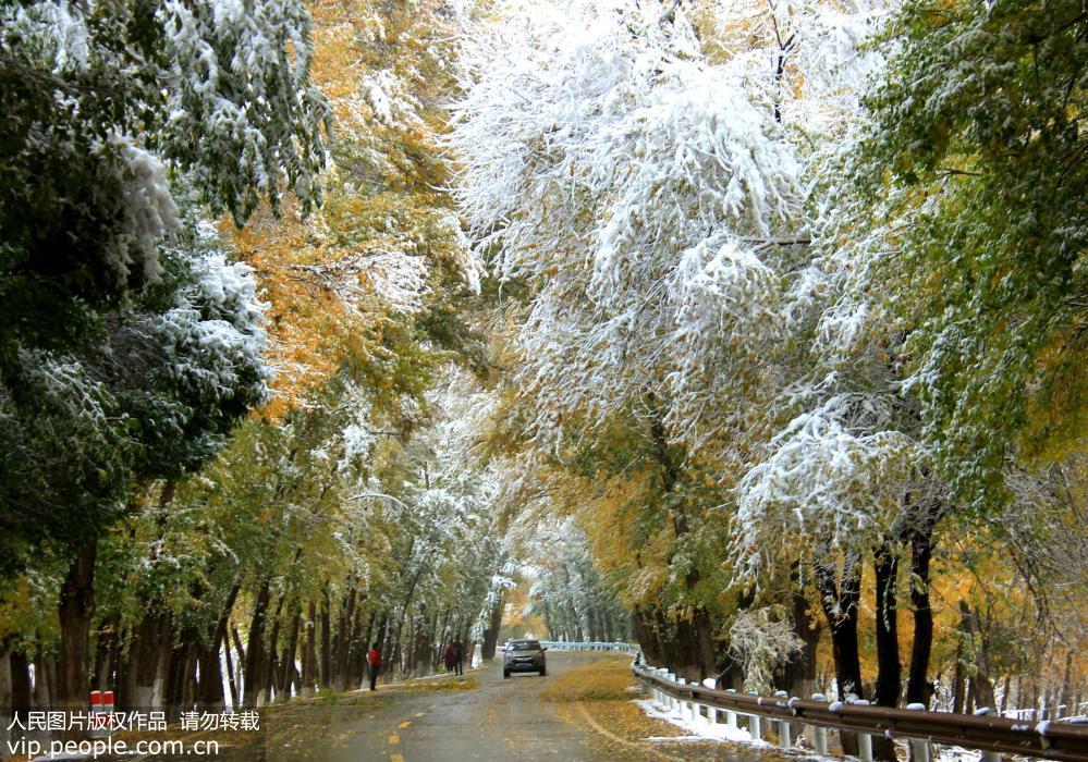 新疆天山天池迎来最美降雪季