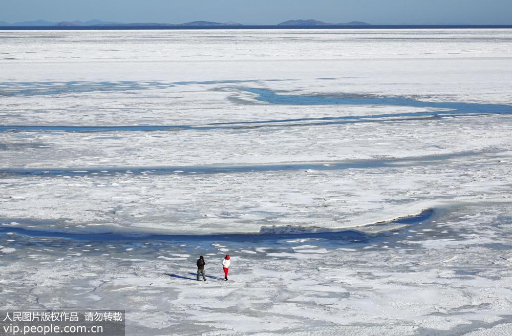 2月16日,渤海大连市北部夏家河子海域被海冰大面积覆盖.