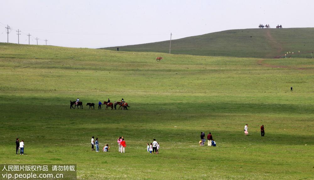 内蒙古辉腾锡勒草原美如画