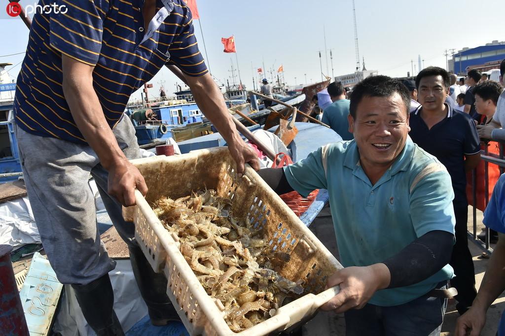 渤海开海后头批海货未下船就卖空