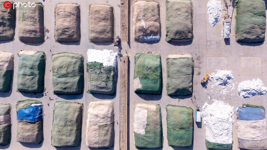 新疆阿克苏750万亩棉花继续开秤 预计总产量将达到90万吨