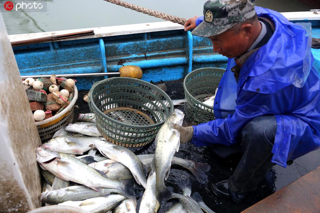 连云港:冬捕归来鱼满舱 品种齐全琳琅满目【3】