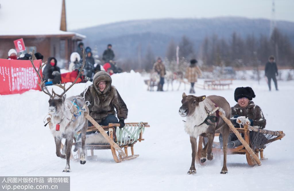 呼伦贝尔:燃情雪橇 激情冬日