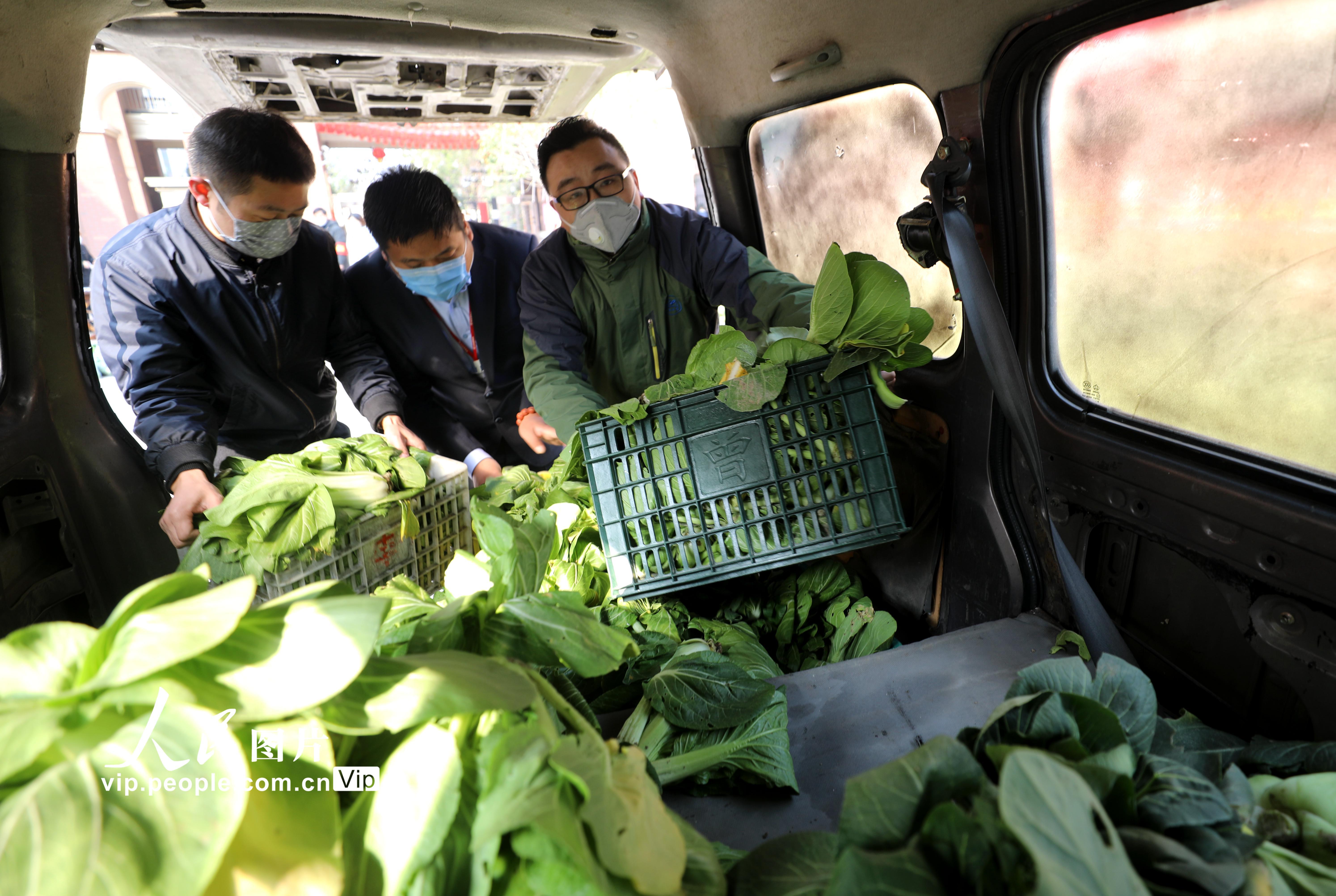 合肥:爱心蔬菜送居民 预约领取防聚集