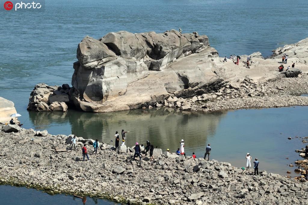 """重庆东水门大桥下""""神龟""""浮出江面 引人围观""""打卡"""""""