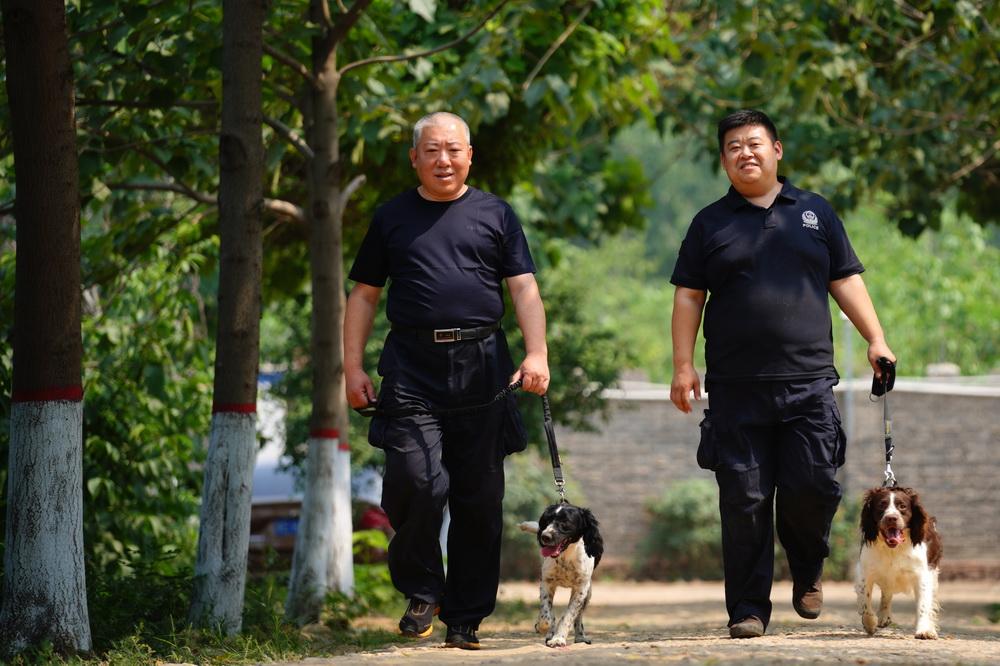 """6月26日,周伟(右)带着""""播求""""与同事一起走向警犬训练场。"""