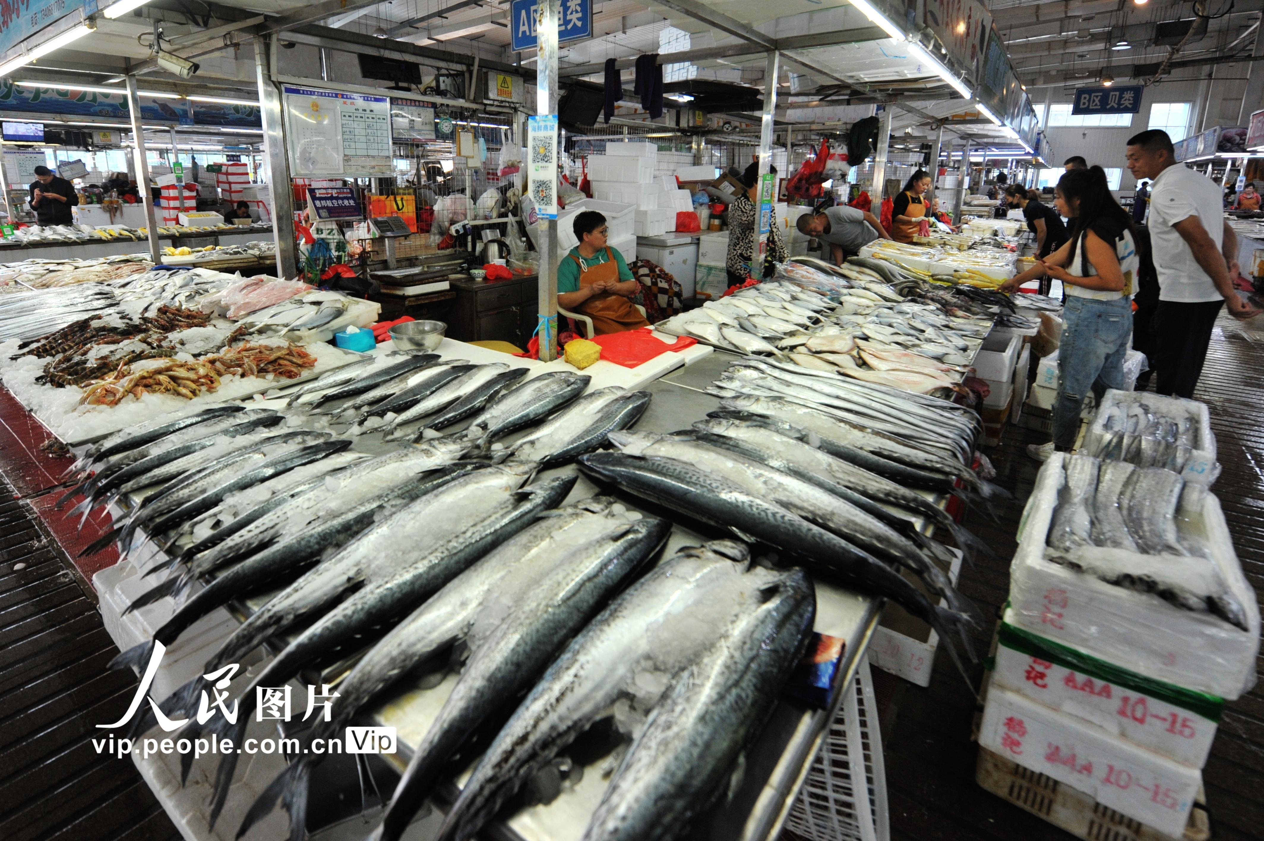 山东青岛:秋捕丰收 海鲜大量上市
