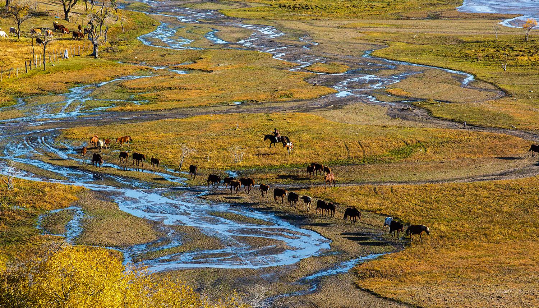 内蒙古赤峰:骏马奔腾