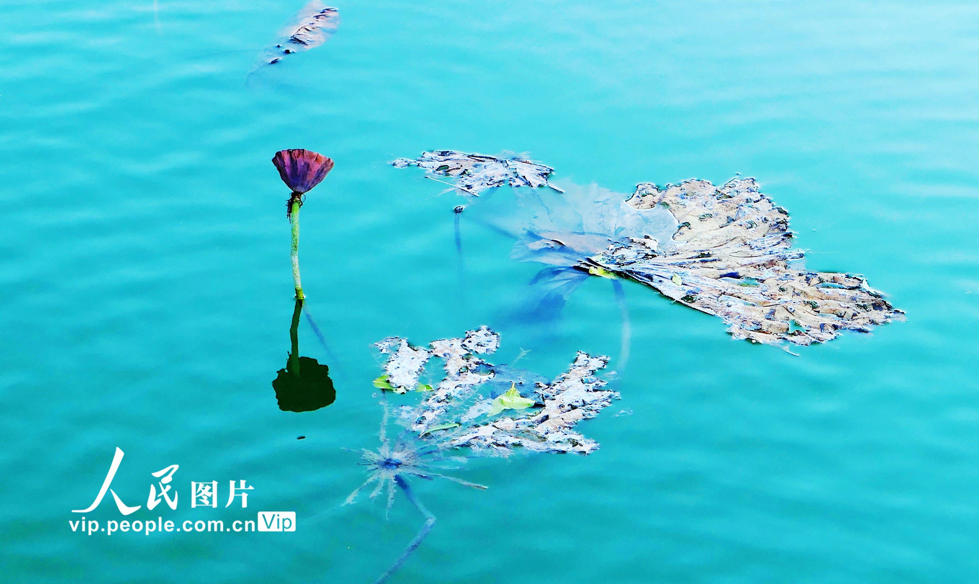 北京:颐和园初现迷人秋日美景