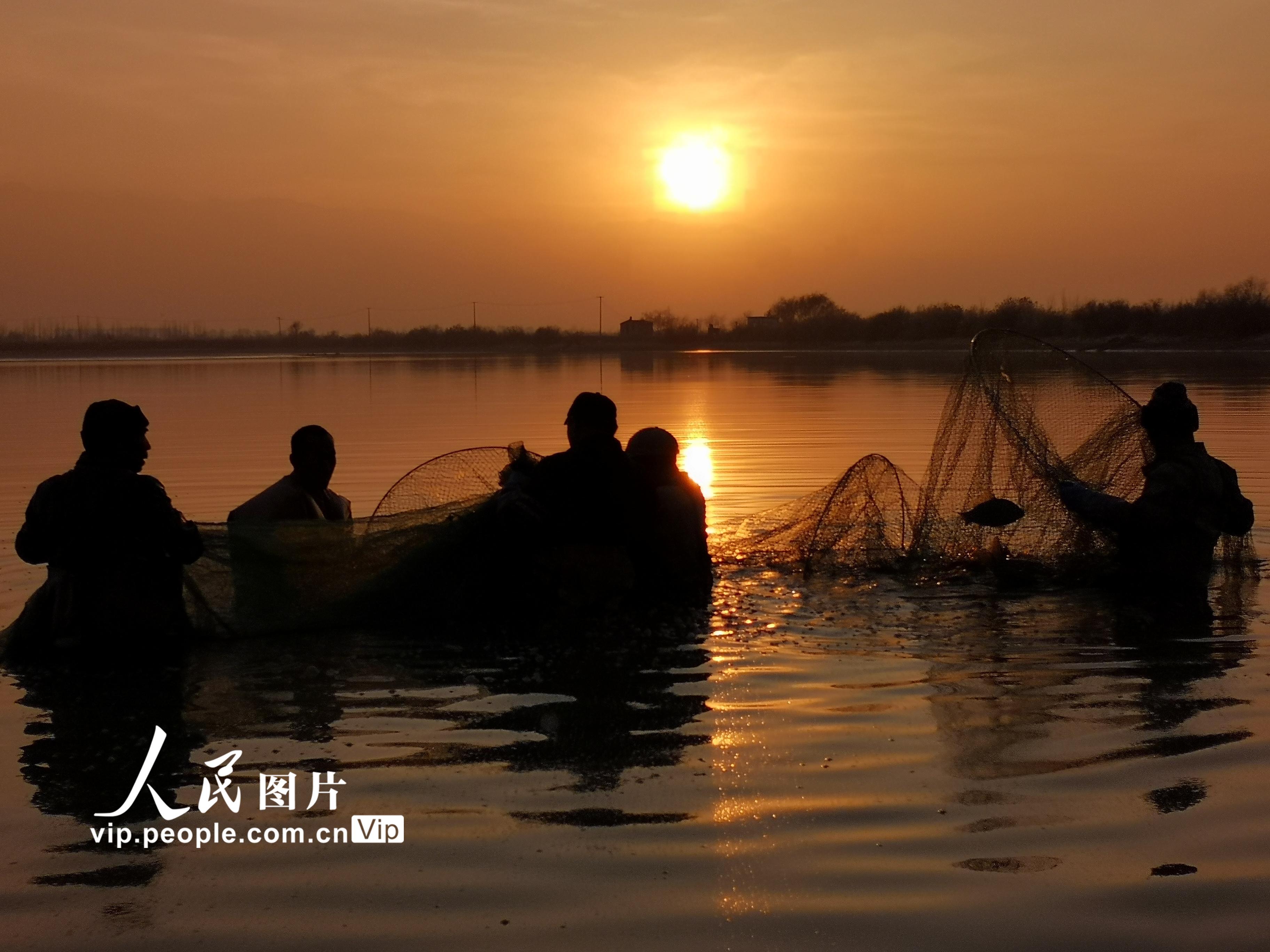 甘肃临泽:农民养鱼助力增收