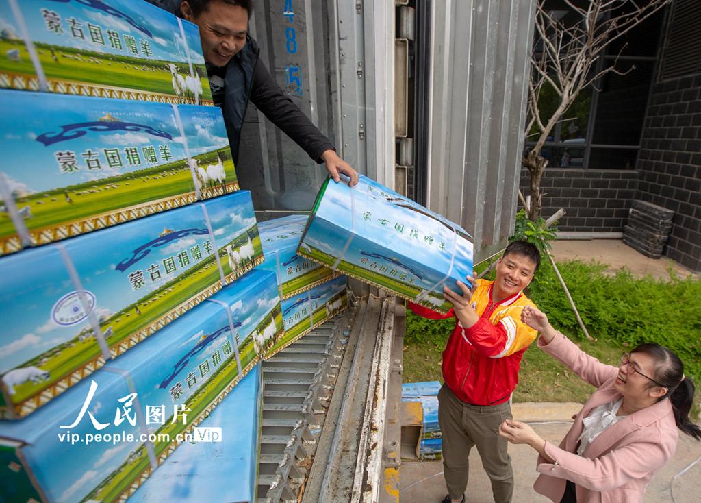 蒙古国捐赠羊肉送抵海南【3】