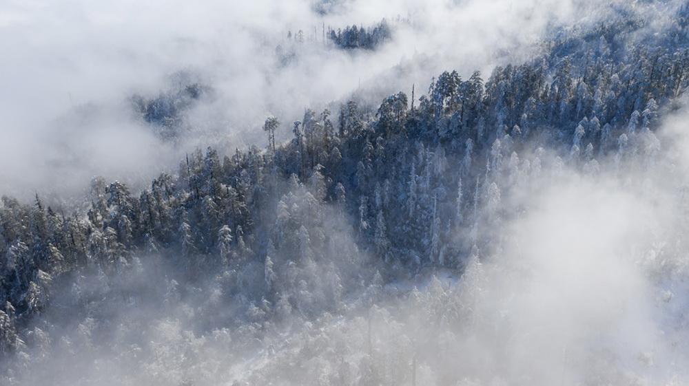 美国气象专家:缺乏规划导致寒灾