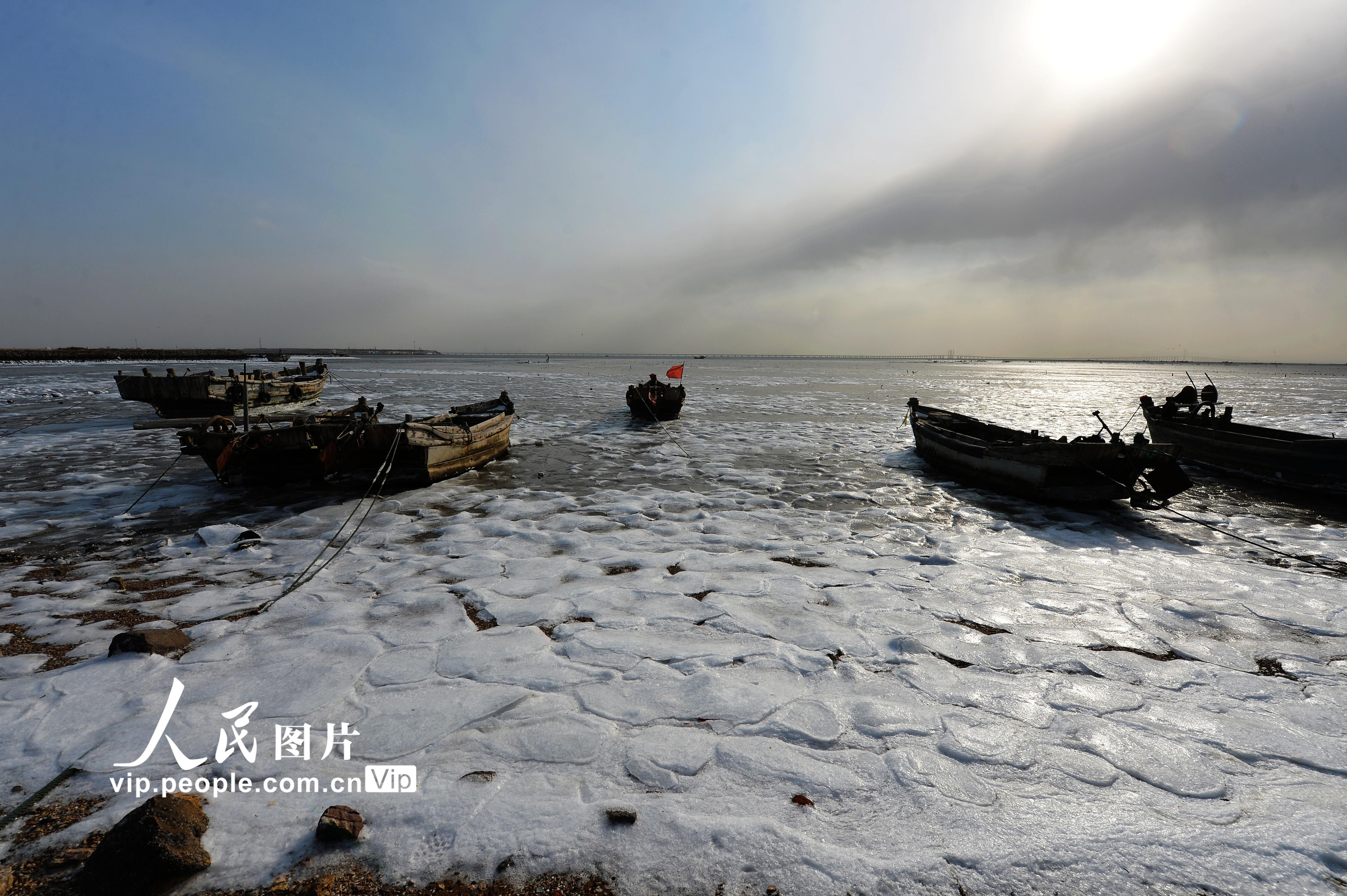 寒潮来袭 山东青岛沿海滩涂开始封冻