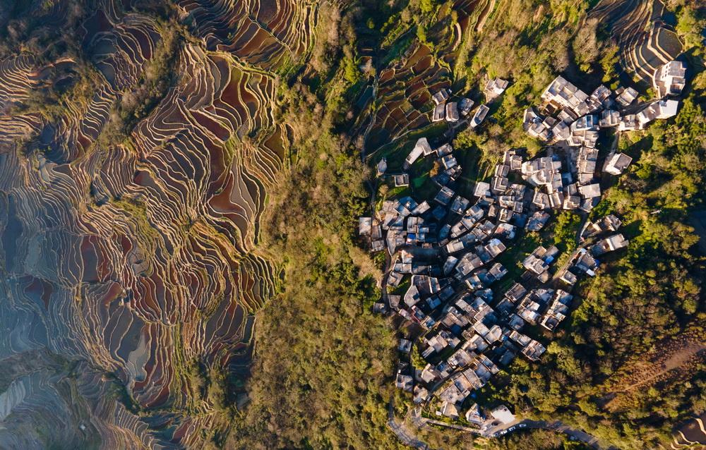 这是1月6日傍晚拍摄的哈尼梯田(无人机照片)。
