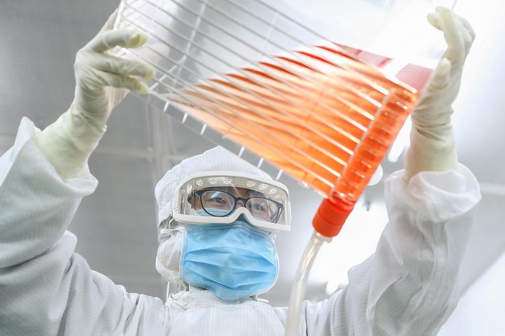 2020年3月23日,科兴中维的工作人员利用细胞工厂进行Vero细胞培养(早期实验室工艺)。新华社记者 张玉薇 摄