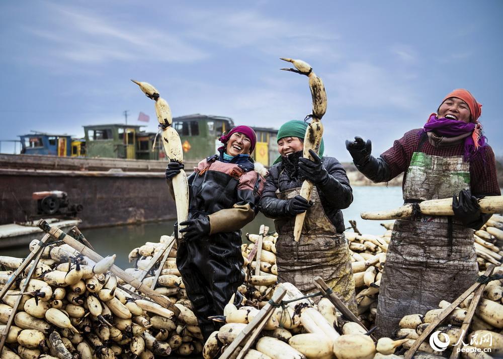 《丰收的喜悦》,聂杭军2014年1月28日摄于江苏省金湖县白马湖。扶贫工程又是一个丰收年,藕农们纷纷兴高采烈地出藕准备过年。
