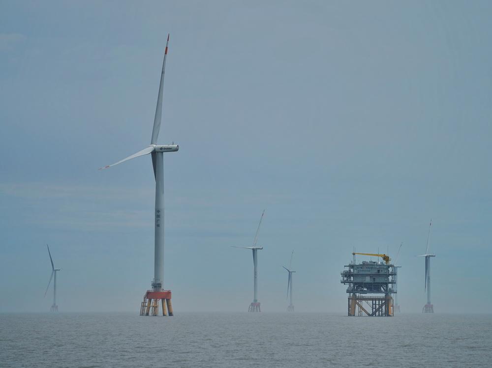 5月16日拍摄的岱山4号海上风电场。