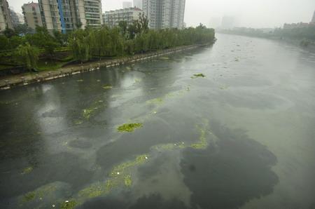 南京外秦淮河严重污染