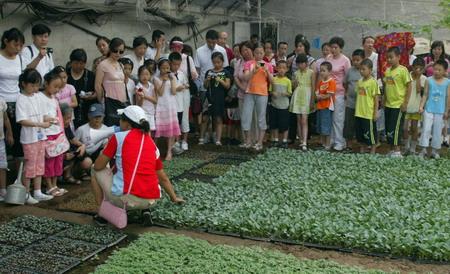 组图:北京小学生暑期社会实践到农村