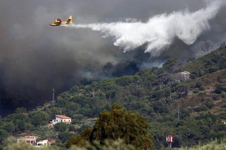 8月22日,一架飞机在意大利西西里岛巴勒莫附近参加林区灭火.