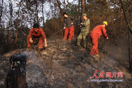 组图:湖南娄底洪家山省级森林公园发生大火