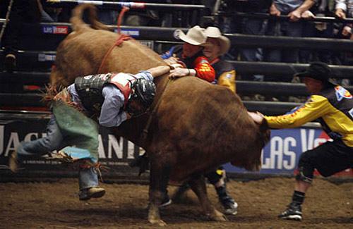 骑牛比赛 职业 精彩瞬间 暴力 惊险刺激/职业骑牛比赛精彩瞬间惊险刺激,不黄,但很暴力[复制链接]