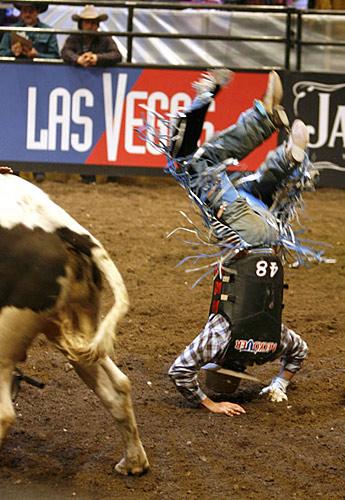 精彩瞬间/职业骑牛比赛精彩瞬间惊险刺激,不黄,但很暴力[复制链接]