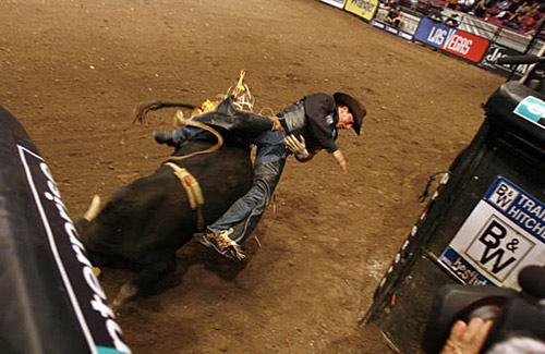大赛 精彩瞬间/职业骑牛比赛精彩瞬间惊险刺激,不黄,但很暴力[复制链接]