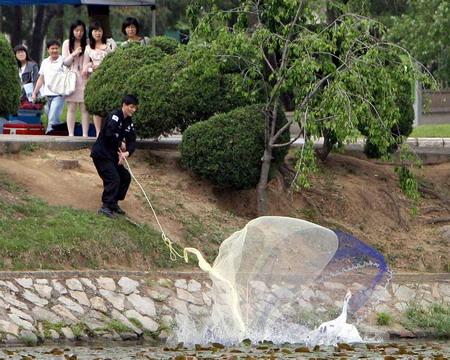韩国首都出现5名禽流感疑似患者